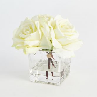 Trio of Roses-Cream